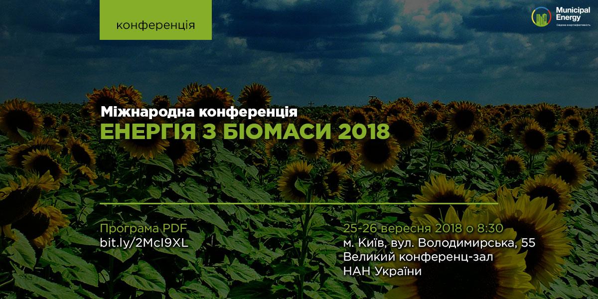 12_08_2018_Енергія-з-біомаси-2018_big